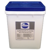 Super White Plaster